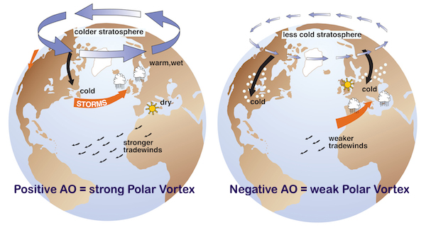 Image of the Arctic Oscillation, from National Snow and IceData Center. A weak AO can lead to extreme mid-latitude winters.